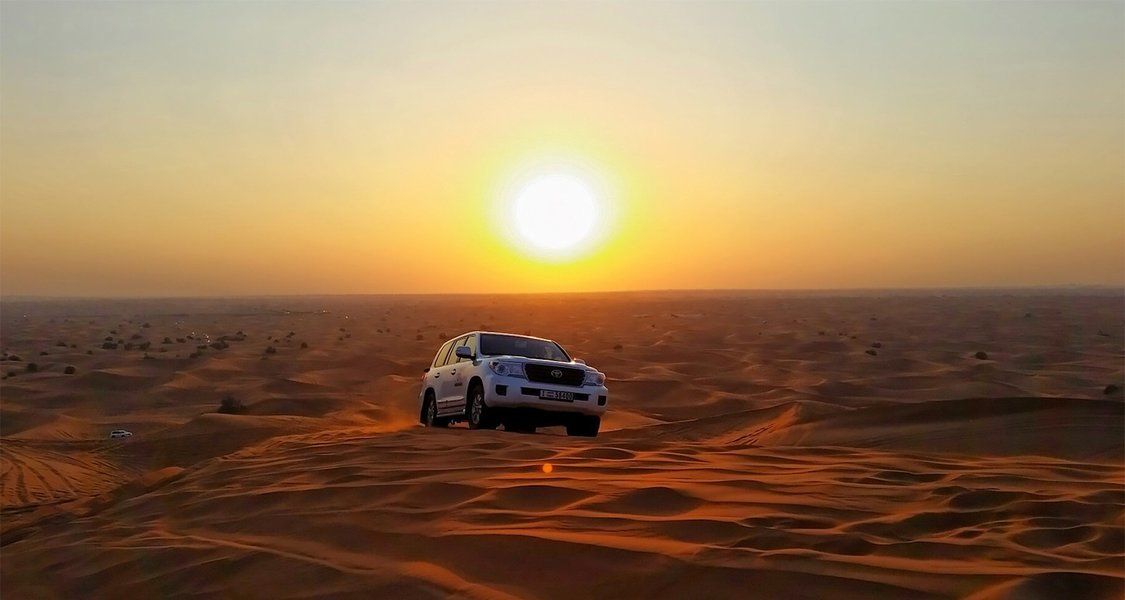 Morning Desert Safari Tour - Tour