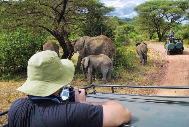 2020_safari_tanzania.jpg - description
