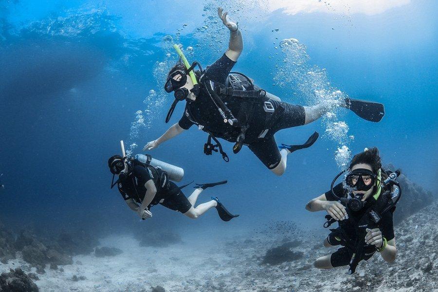 Discover Scuba Diving Course in Koh Samui - Tour