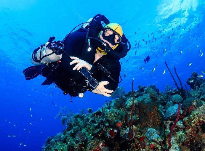 Nava Scuba Diving Experience at Koh Tao - Tour