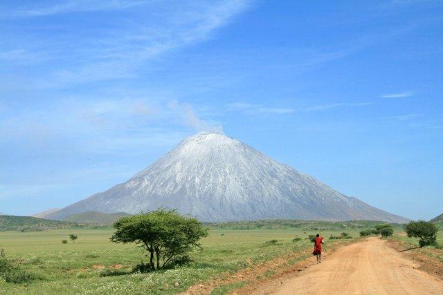 Tanzania Safaris - Collection