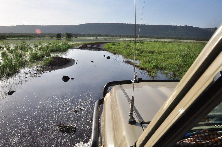 Tanzania in Luxury Style - Tour