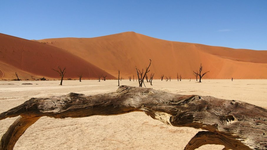 Magnificent Namibia Lodge Safari - Tour