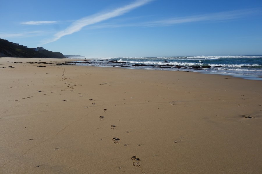 The Garden Route & Cape Wonders: George to Cape Town - Tour