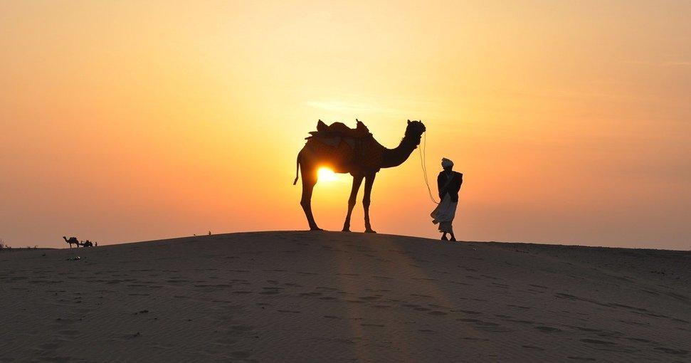 Camel Trekking Experience in Abu Dhabi - Tour