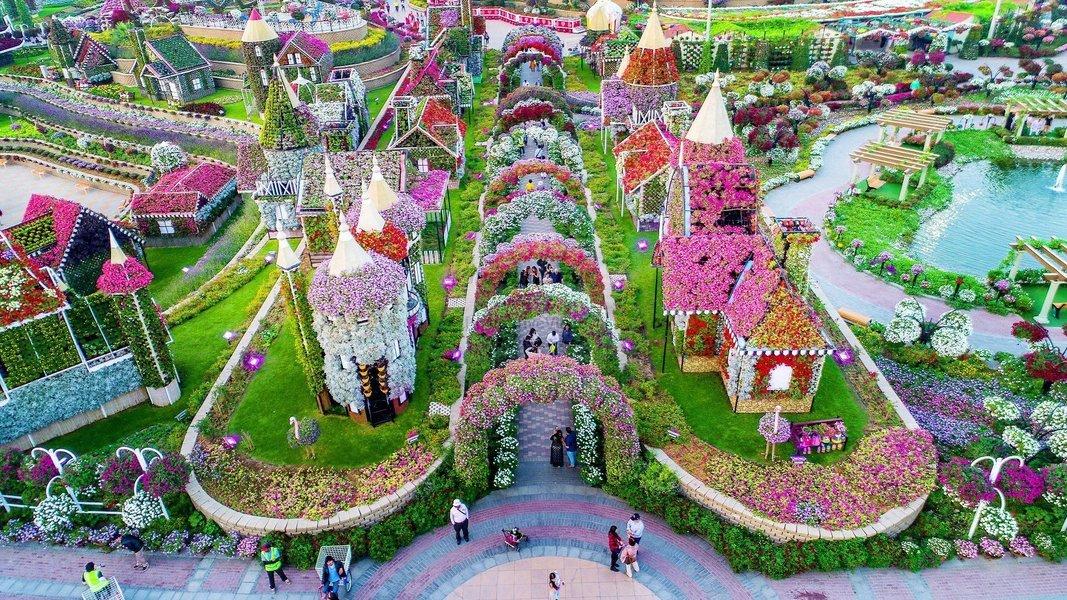 Miracle Garden Ticket in Dubai - Tour