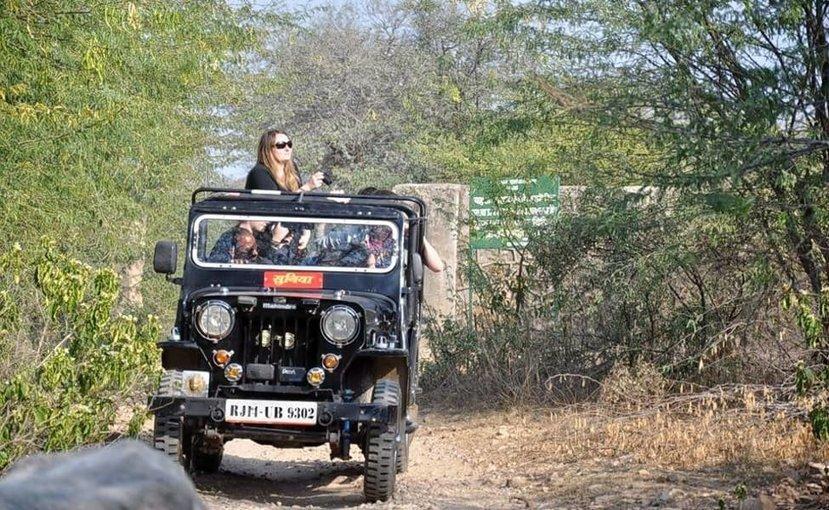Gyptain Safari in Jaipur - Tour
