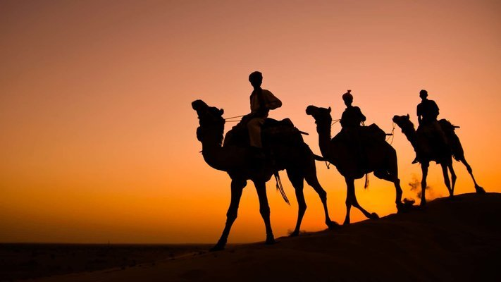 Thar Desert Camel Safari from Jodhpur - Tour