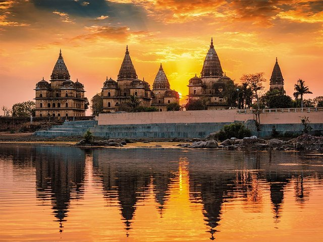 ORCHHA - Collection