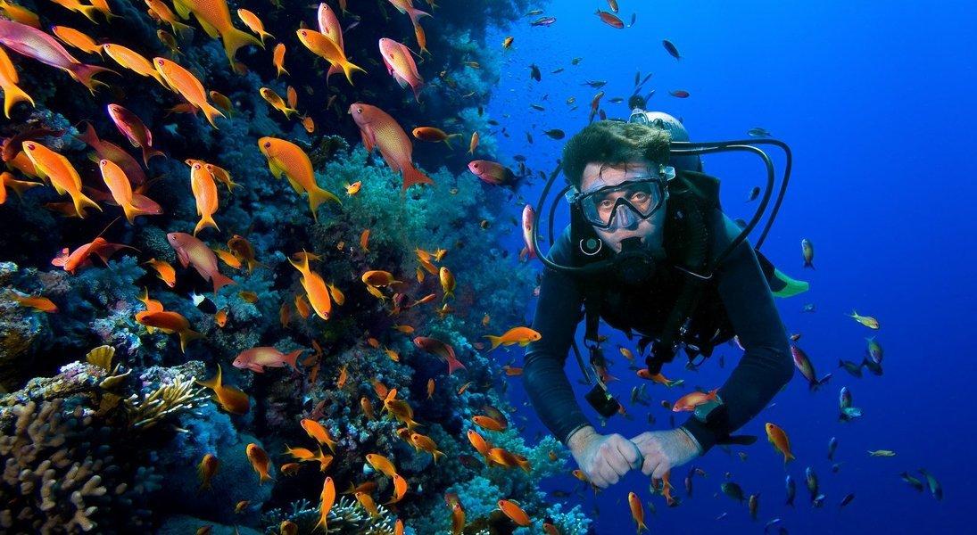 Scuba Diving Experience in Grande Island - Tour