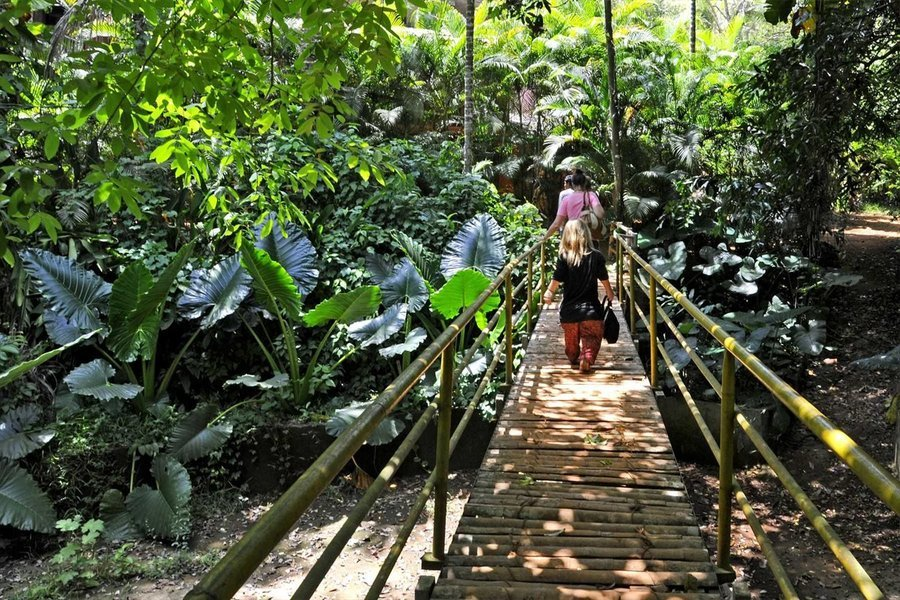 South Goa and Spice Plantation Private Day Tour - Tour