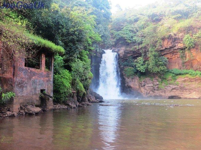 Harvaleem Waterfall Tour in Goa - Tour