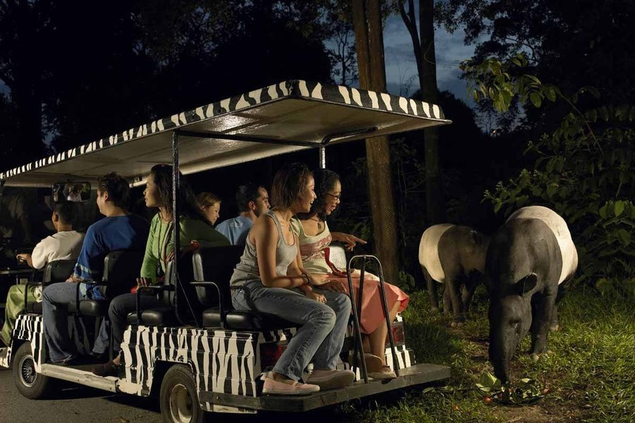 Singapore Night Safari Ticket with Tram Ride - Tour
