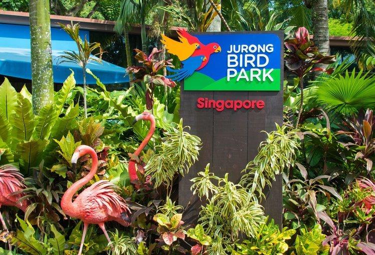 Jurong Bird Park with Tram Ride - Tour