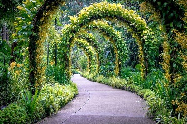 Singapore Garden City Tour - Tour