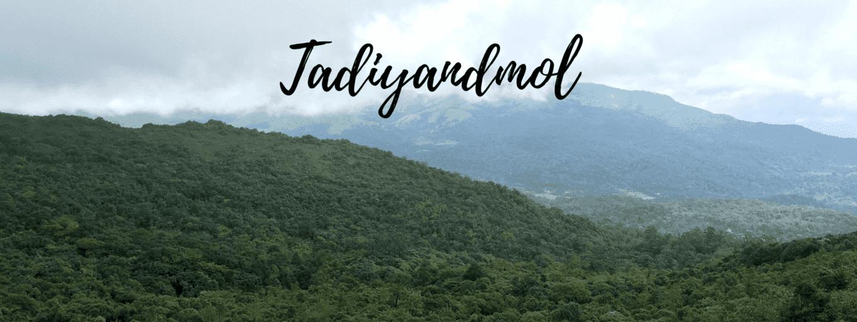 Trek to Tadiandamol - Tour