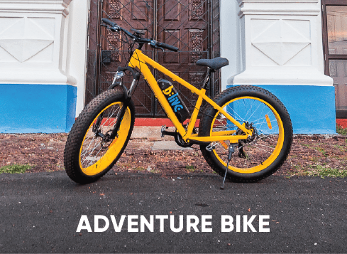 Adventure Electric Bike