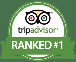 Tripadvisor Ranked No #1