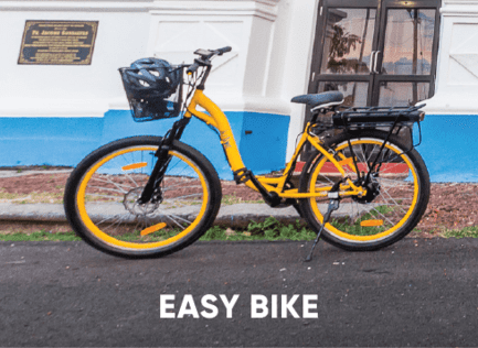 Easy Electric Bike
